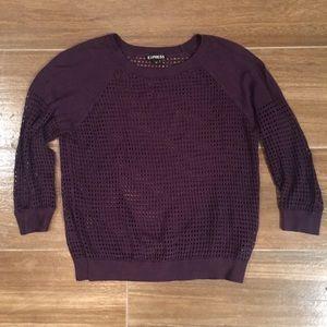 Express XS Knit Sweater Purple